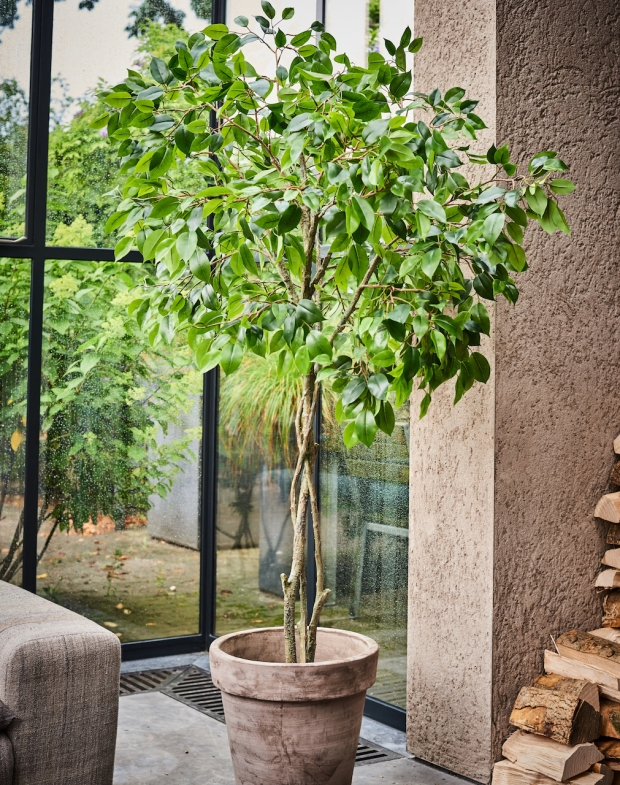 Silk-Ka Kunstboom in pot Ficus groen 180 cm